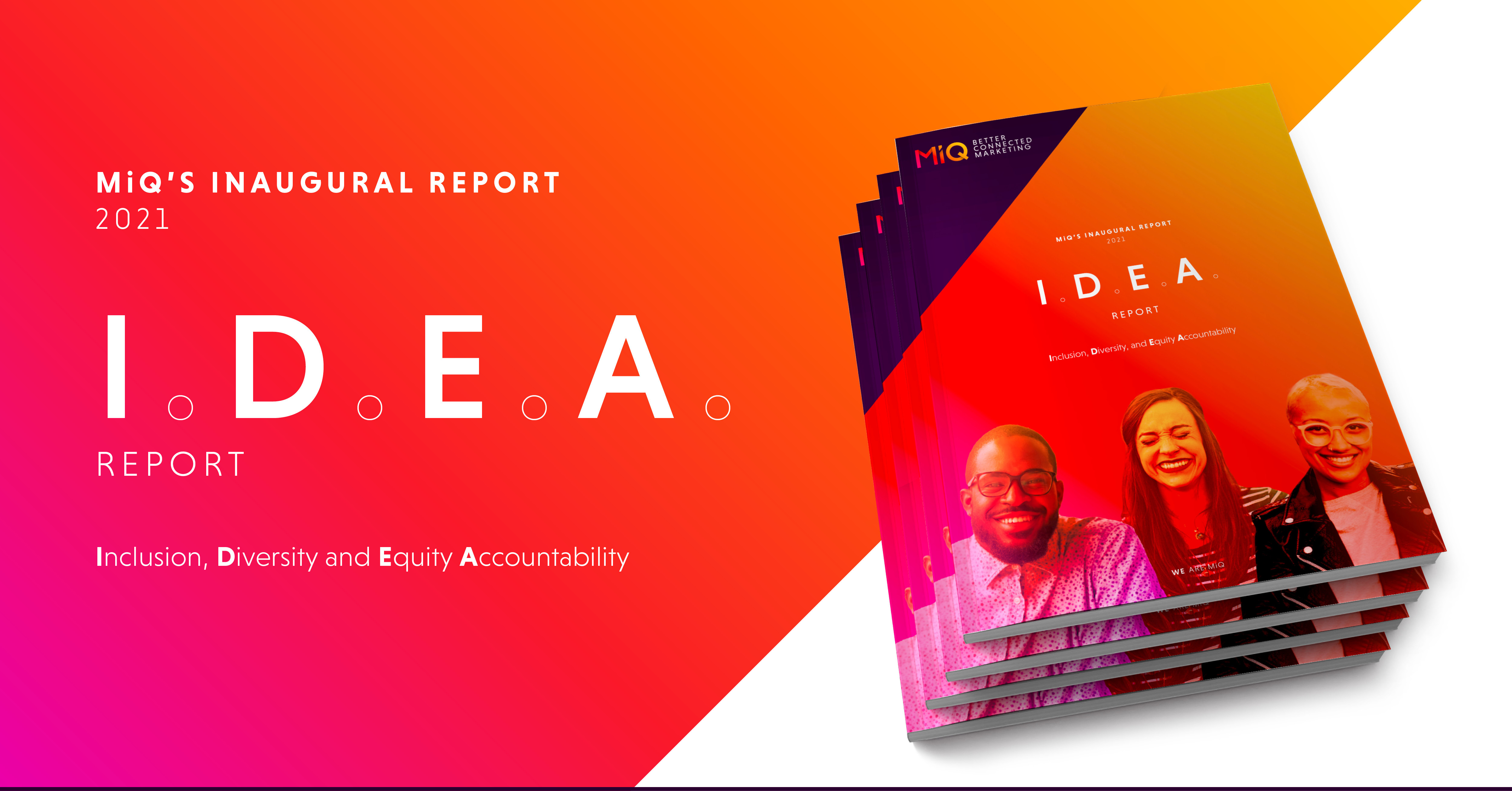 IDEA Report_Landing_Page_Panel